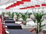 Live Plants Hire For Events